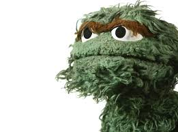 Am I Really a Grouch or What?
