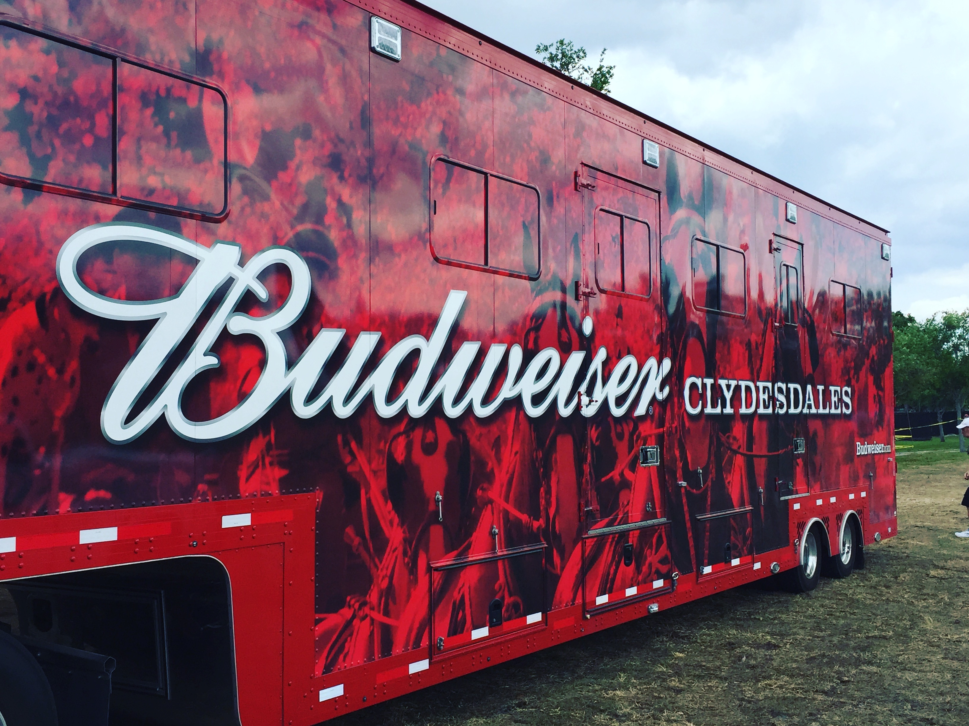 World Renown Budweiser Clydesdales come to Fort Lauderdale